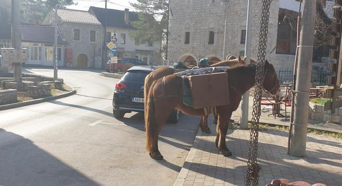 Nevjerojatna Manisha s dva konja i vjernim psom stigla u Stolac