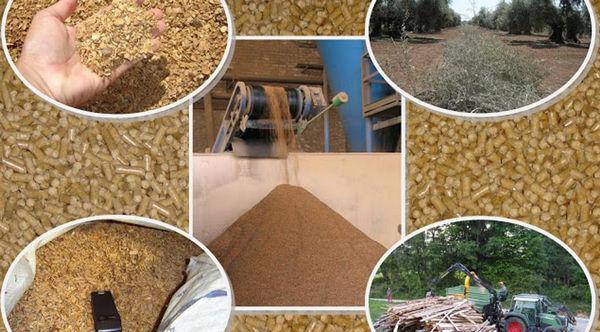 Korištenjem biomase osigurava se najveći broj radnih mjesta na lokalnoj razini