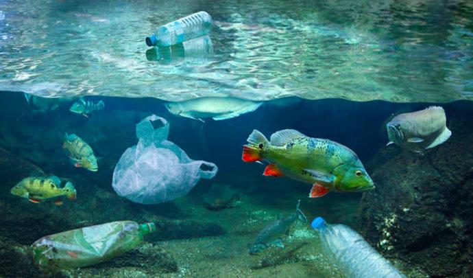 BiH baca tri kilograma plastike u more po stanovniku