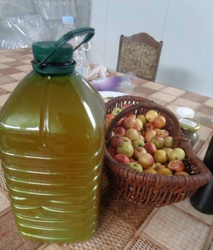 Hercegovci se vraćaju tradiciji: Ocat od divljih jabuka ljekovita novina