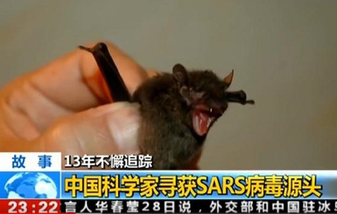 Pojavio se stari kineski dokumentarac o virusima, pokazuje neke zabrinjavajuće stvari
