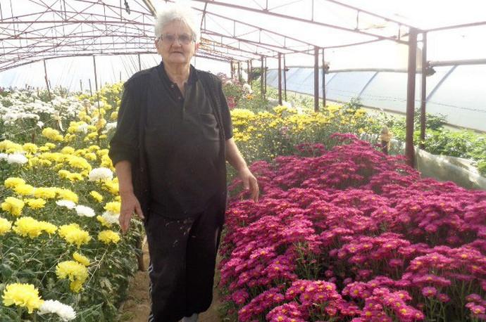 Baka iz Počitelja uzgaja cvijeće: Moraš s njim razgovarati, a i zaradi se
