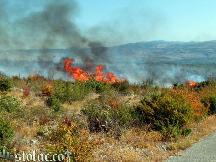 U Jasoču izgorjelo 50 ha niskog raslinja