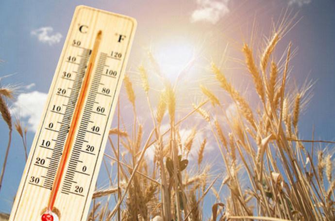 Pred nama najintenzivniji toplinski val ljeta 2021. u Europi