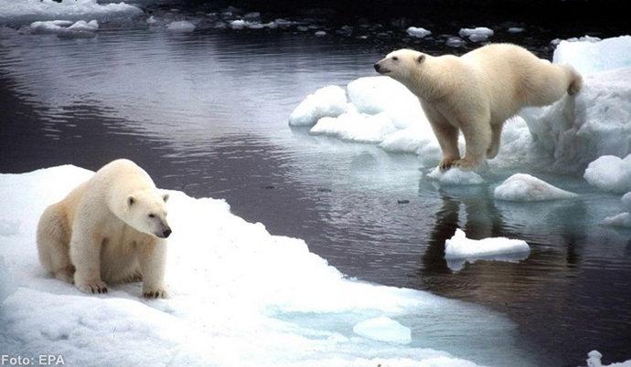 U norveškom dijelu Arktika temperatura 22°C, inače je između 5 i 8°C